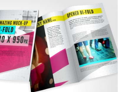 DDL Gloss Leaflets and Brochures