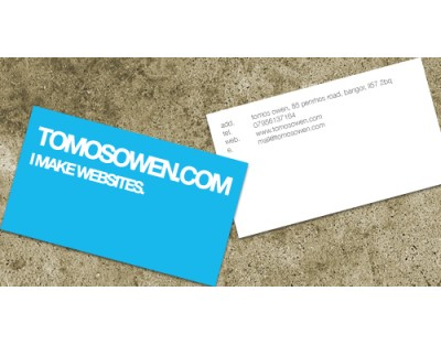 Spot Colour (Pantone) Matt Laminated Business Cards
